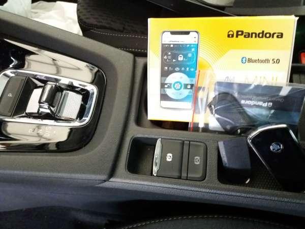 Pandora 21