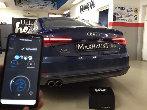 Maxhaust 31